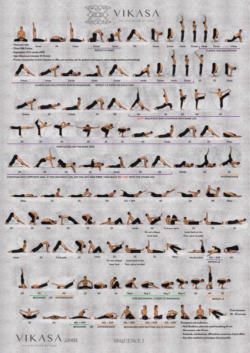 Learn Vikasa Yoga Online 5