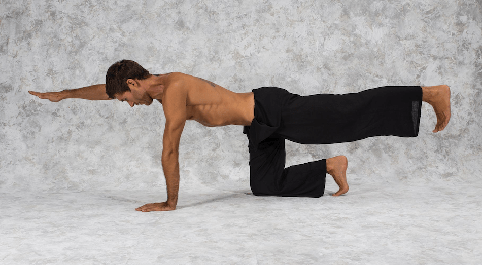 How to do Plank Pose 2
