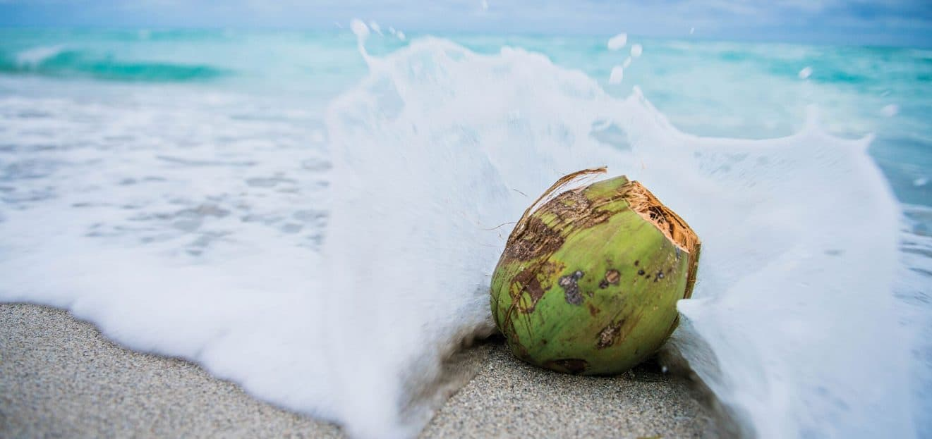 Health Benefits of Coconut Water 2