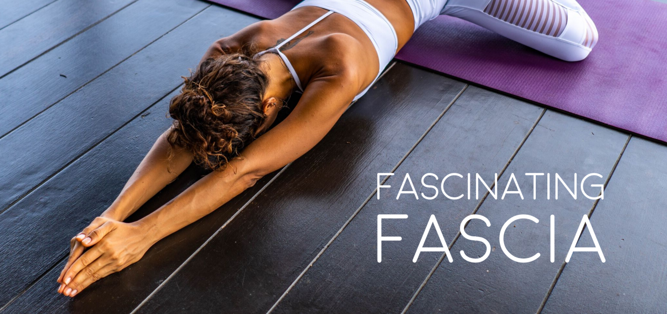 Fascinating Fascia: Five ways to tap into your connective tissue 2